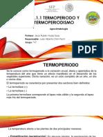 TERMOPERIODO Y TERMOPERIODISMO