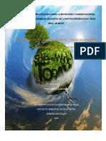 proyecto medio ambiente 2020