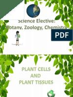 Sciel(Plants)