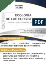 ECOLOGIA_DE_LOS_ECOSISTEMAS_(ESTRUCTURA)_.pdf.pdf