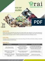 RAI-Brochure