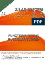 MUSCULAR-SYSTEM-FINAL1.pptx