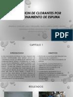 SEPARACION DE CLORANTES POR FRACCIONAMIENTO DE ESPUMA.pptx
