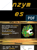 enzyme-ppt.ppt
