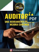 Auditaría, una herramienta para la mejora continua, Ebook. .pdf