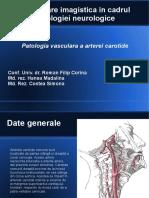 Imagistica carotide