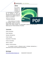 26. Trichuris y Enterobius
