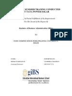 VANSHIKA REPRT PDF.pdf