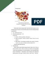 Anatomi dan Fisiologi Darah.docx