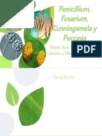 Penicillium, Fusarium, Cunningamela y Puccinia.pdf