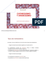 17-catabolismo-y-anabolismo3.pdf