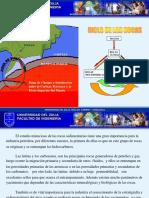 313317786-Rocas-Sedimentarias.pdf