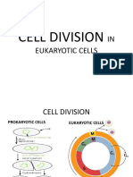 CELL-DIVISION-IN-EUKARYOTIC-CELLS-HANDOUT