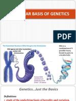 MOLECULAR-BASIS-OF-GENETICS-HANDOUT