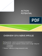 actionpotential2-130823151346-phpapp02.pdf