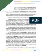 TERMINOS_Y_CONDICIONES_SERVICIO_B2B_COMERCIAL_08.01.2020 (1).pdf