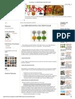 Fran Bonsai_ LA IMPORTANCIA DE DEFOLIAR