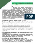 II DOMINGO DEL TIEMPO ORDIANARIO - Ciclo A