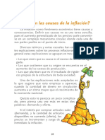 4835807 Causas de la inflacion.pdf