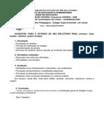 AP2 ES II SUGESTÃO PARA O ROTEIRO DE SEU RELATÓRIO FINAL (2)