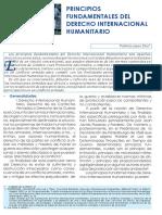 principios fundamentales del derecho internacional humanitario word