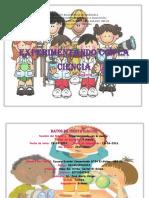 PROYECTO DE EXPERIMENTOS.docx