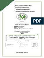 RAACHE-BERRAH.pdf