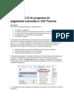 Execução F110 do programa de pagamento automático