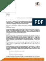 Propuesta de servicios de auditoría ABS v0