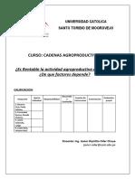 ¿Es rentable la actividad agropecuaria en el Perú?