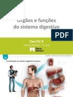 Ctic9 E2 Órgãos e Funções Do Sistema Digestivo