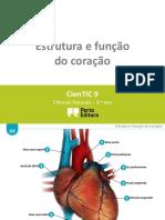 Ctic9 G2 Estrutura e Função Do Coração