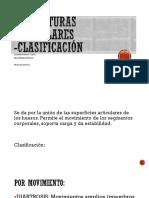 ESTRUCTURAS-ARTICULARES.pptx