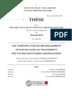 2015TOU33042.pdf