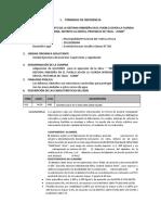 TÉRMINOS DE REFERENCIA GAVIONES.docx