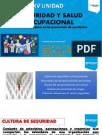 15 Seguridad y Salud Ocupacional.pdf