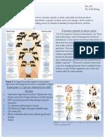 Disease- 90 Second Naturalist .pdf