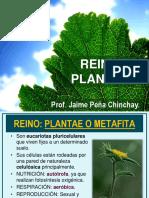 REINO PLANTAE Y ANIMALÍA.pdf