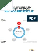 2.1 Neuroaprendizaje