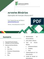 Árvores Binárias - Slides IFRS Osório - Gabriel Moraes