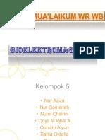 BIOELEKTROMAGNETIKA.pptx