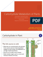 Carbohydrate Metabolism of Plants