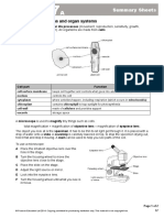 7a Summary sheet.doc.doc