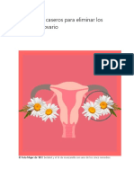 5 remedios caseros para eliminar los quistes de ovario.docx