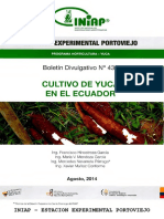 Manual de la Yuca