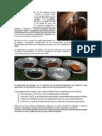 Lectura_El artista prehistórico_por Antonio Caballero.docx