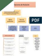 Organizador grafico opciones de titulación.docx