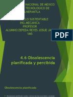 4.6 desarrollo.pptx
