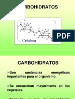 13. CARBOHIDRATOS (2).ppt