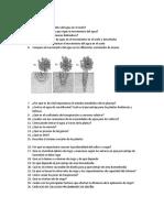 preguntas parcial 2.docx